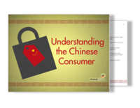 Chinese consumer ebook cover